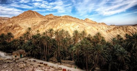 Top 10 Sites You Must See in Tunisia   TunisiaOnline