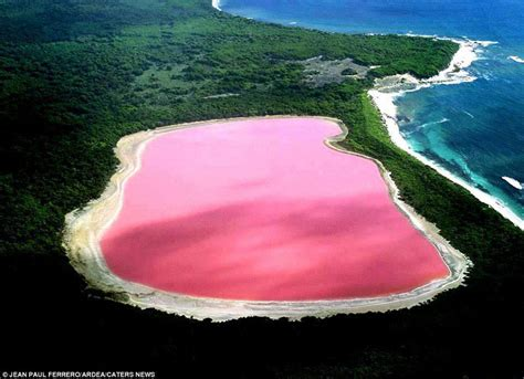 TIL there is a pink lake under the West Gate Bridge