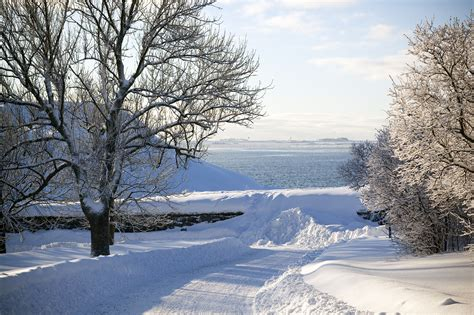 Touch of Northern Magic in Winter - Finland Tours