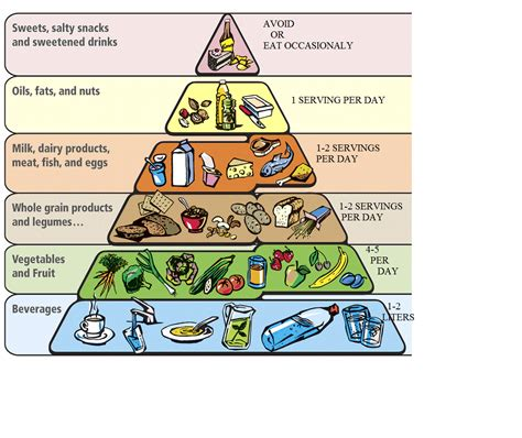 Polish ideas about healthy diet- exercisesreading