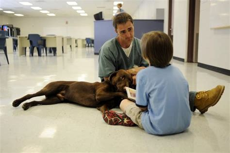 Sterling prisoner trains dog to help boy with autism